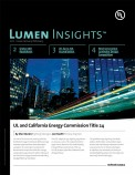 Lumen Insights, 2011, Issue 1