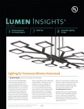 Lumen Insights, 2013, Issue 4
