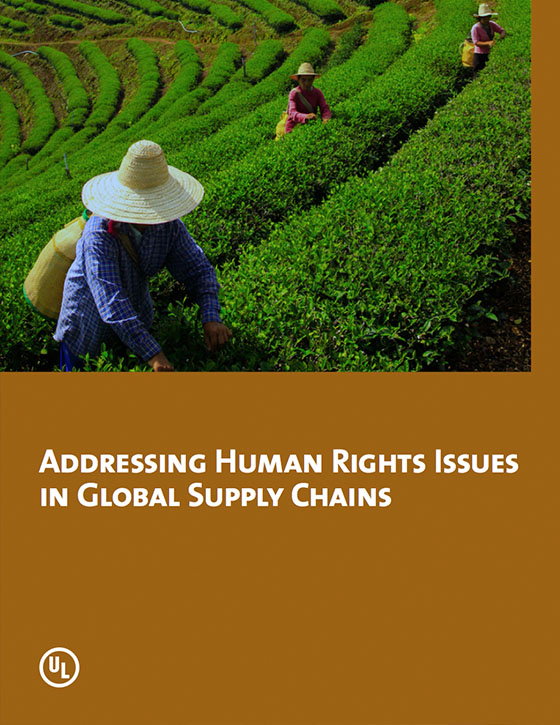Addressing Human Rights Issues in Global Supply Chains