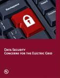 Data Security Concerns for the Electric Grid