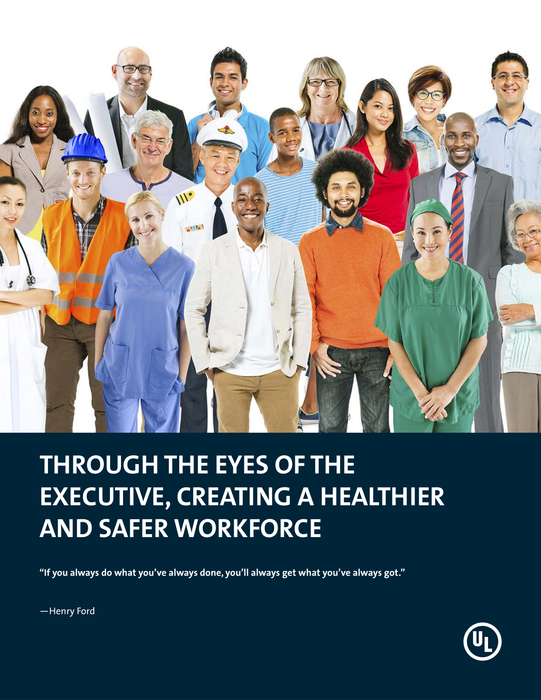 Through the Eyes of the Executive, Creating a Healthier and Safer Workplace