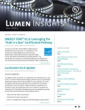 Lumen Insights, 2015, Issue 3