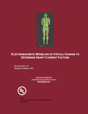 Electromagnetic Modeling of Virtual Humans to Determine Heart Current Factors